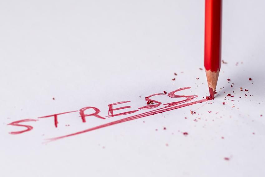 Zusammenhang Koerpergewicht und Stress