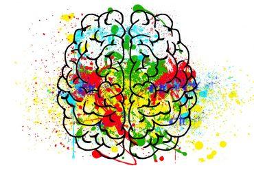 Brainfood – wenn Essen beim Denken hilft!